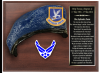 Click this Image to visit the Air Force Beret Plaques category.