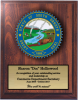 South Dakota State Seal State Seal Plaques