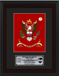 Framed Single Mat Simulated Army Colors  12 x 16  Army Colors | Framed