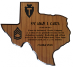 Texas Plaques Army Plaques | Laser Engraved | Custom Shape