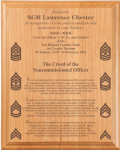 NCO Creed Plaque 12 x 15 Military Creed Plaques and Frames