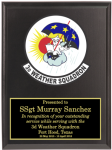 Air Force Crest Plaques Military Plaques | Colored Crest