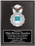 Air Force Security Forces Badge Plaques Military Plaques | Colored Crest