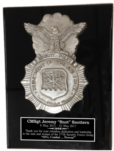 Air Force Security Relief Plaque Military Retirement Gift